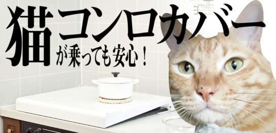 猫がガスコンロの上に登る対策2