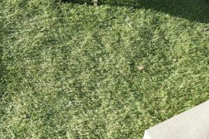 繋ぎ目がわかりずらい人工芝